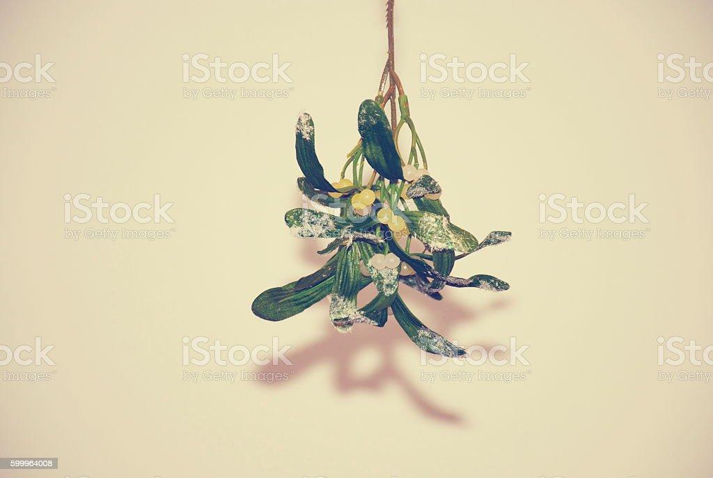 Mistletoe hanging at Christmas stock photo