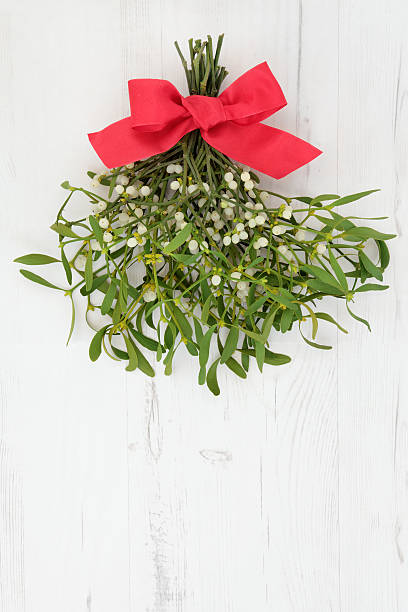 Mistletoe with Red Bow stock photo