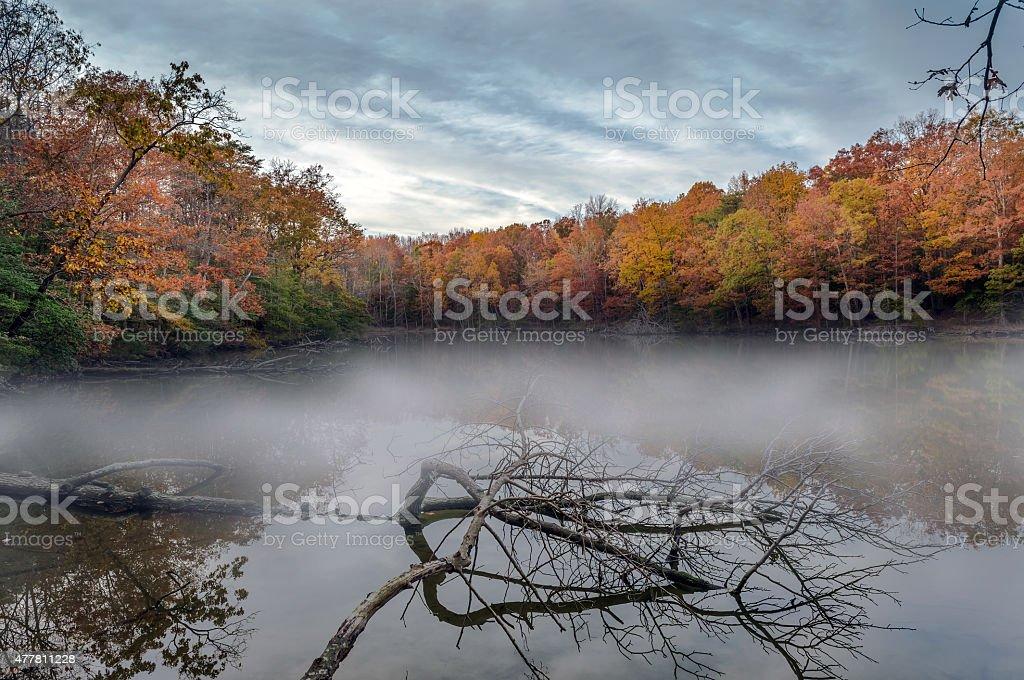 Misty Autumn Lake stock photo