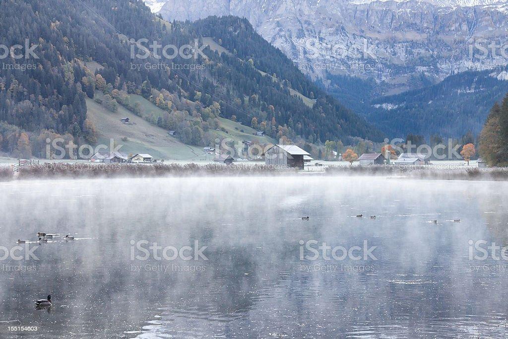 Misty Autumn Morning in Lenk, Switzerland stock photo