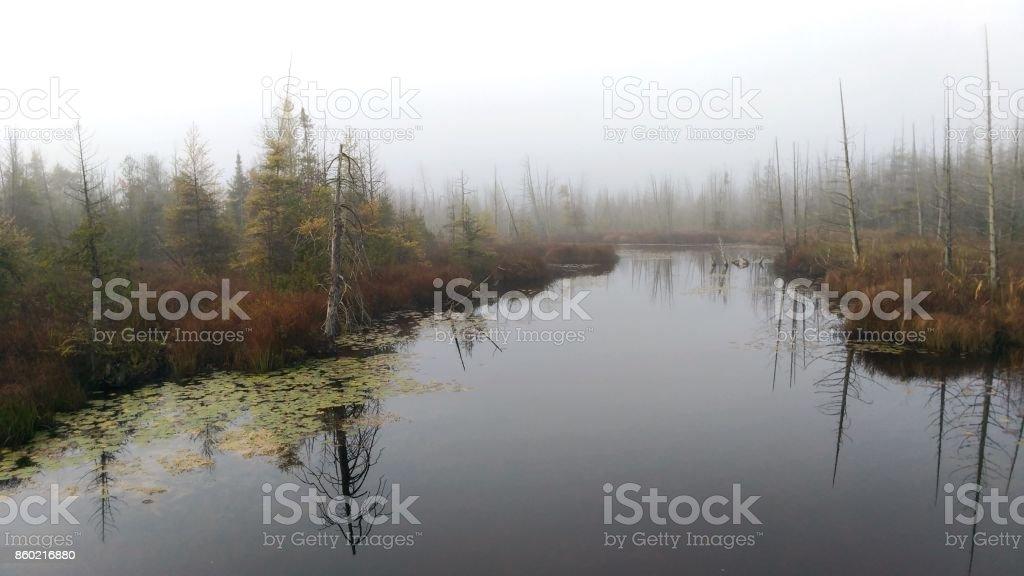 A Misty Autumn Morning stock photo