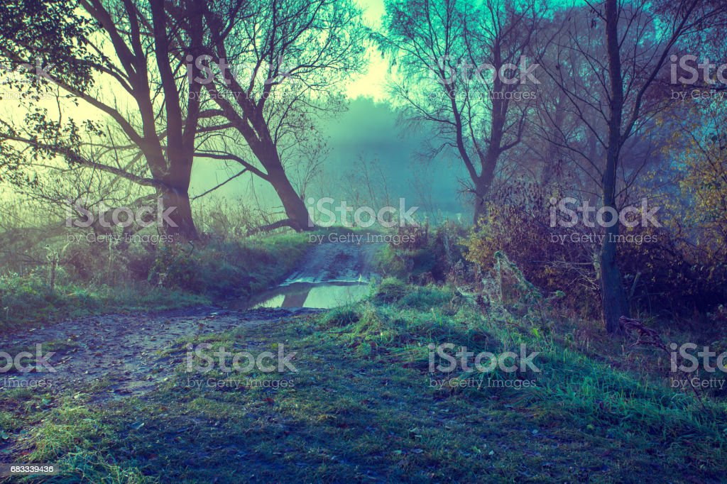 Misty autumn rural landscape at sunrise royalty-free stock photo