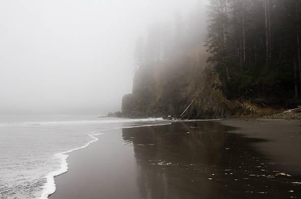 Misty Beach Sand Reflection stock photo