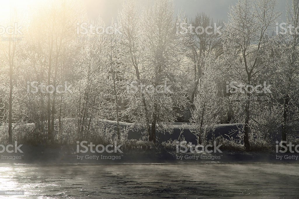 Misty Bow River royalty-free stock photo