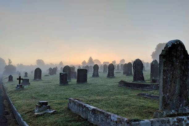 misty cemetery - cemetery stock photos and pictures
