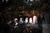 Islamic misty cemetery on sunset
