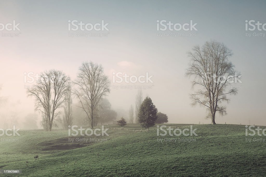 Misty countryside royalty-free stock photo