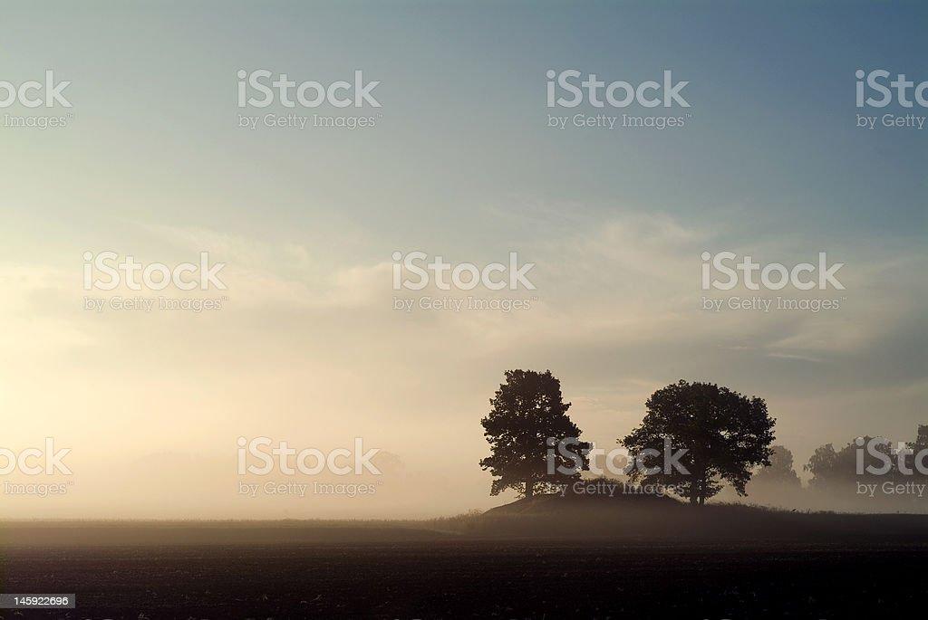 Misty dawn royalty-free stock photo