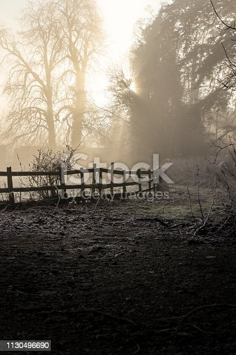 Misty ethereal foggy sunrise with sunlight streaming through a woodland