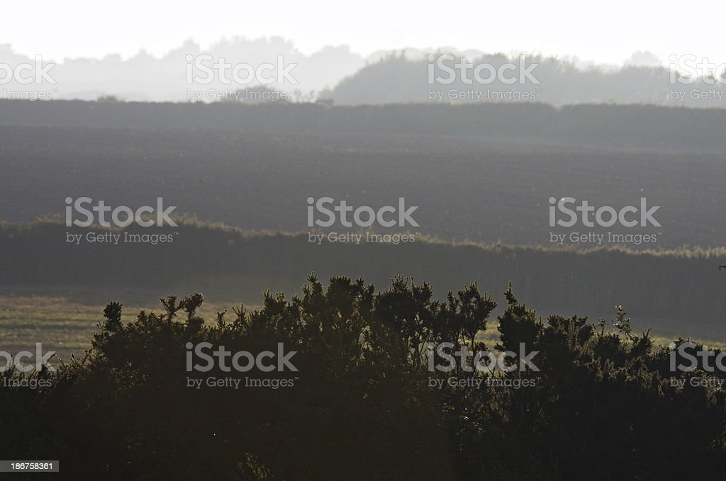 Misty Evening View Over Fields And Hedges royalty-free stock photo