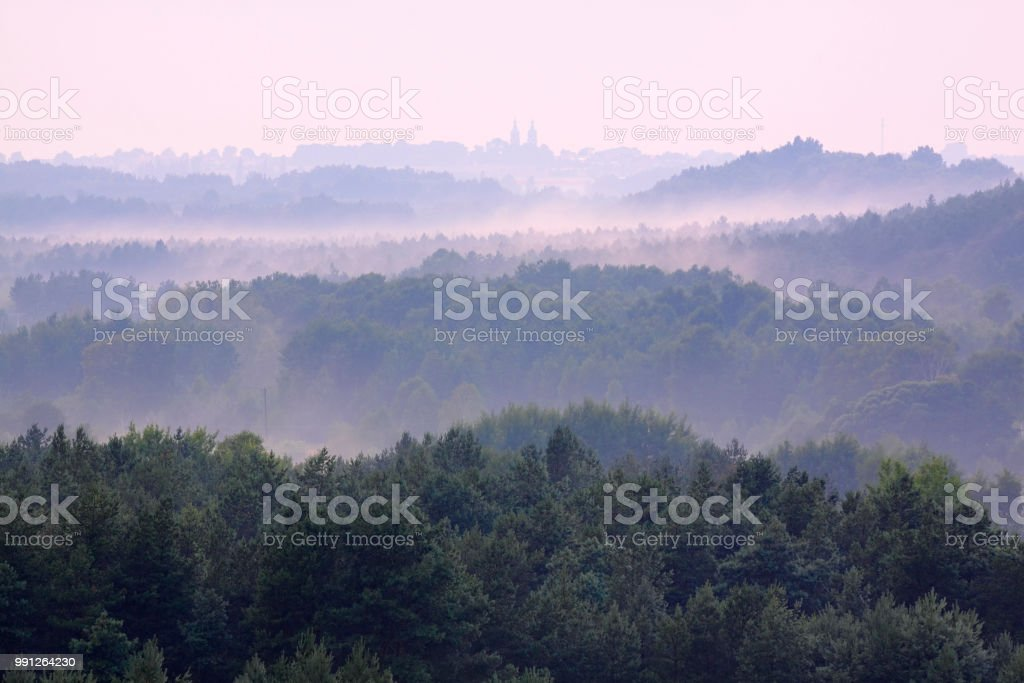 Misty forests stock photo