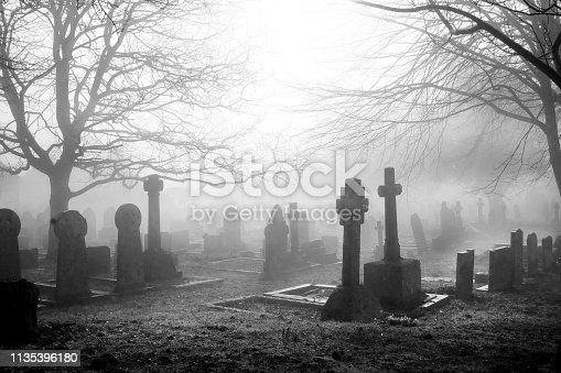 An eary mist covering an English grave yard with about fifty grave stones, the headstones in the foreground are in the shape of large Cristian crosses, two large trees with no leaves on cover each side of the grave yard.