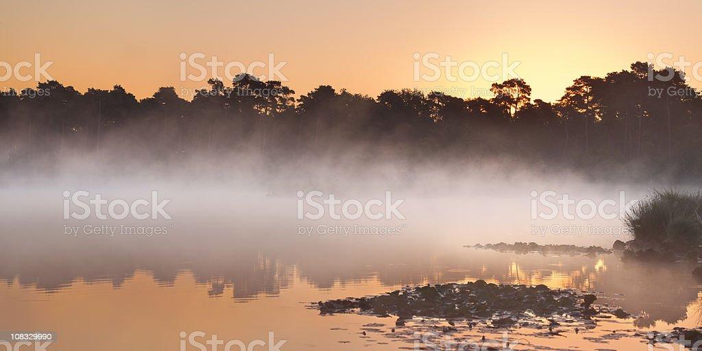 Misty lake at sunrise in Kampina, Brabant, The Netherlands royalty-free stock photo