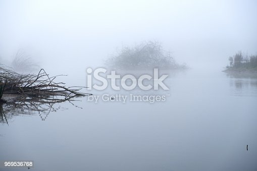 Misty landscape in the Park