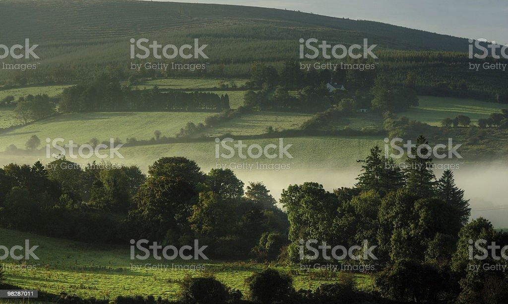Mattina nebbioso rurali in Irlanda foto stock royalty-free