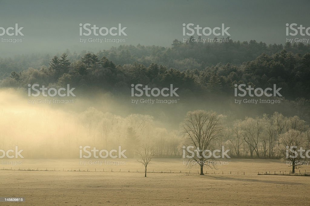 Misty Morning in the Country royalty-free stock photo