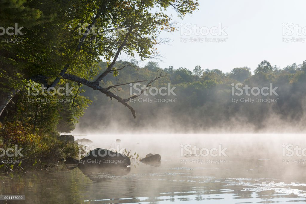 Misty morning on a lake in late summer stock photo