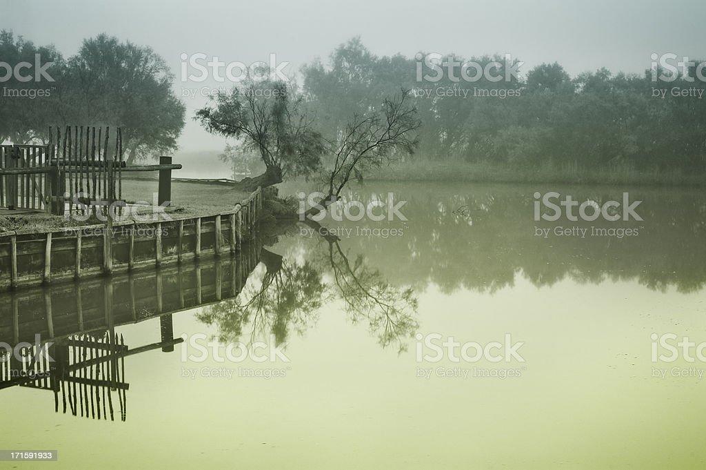 Misty morning on Camargue marsh royalty-free stock photo