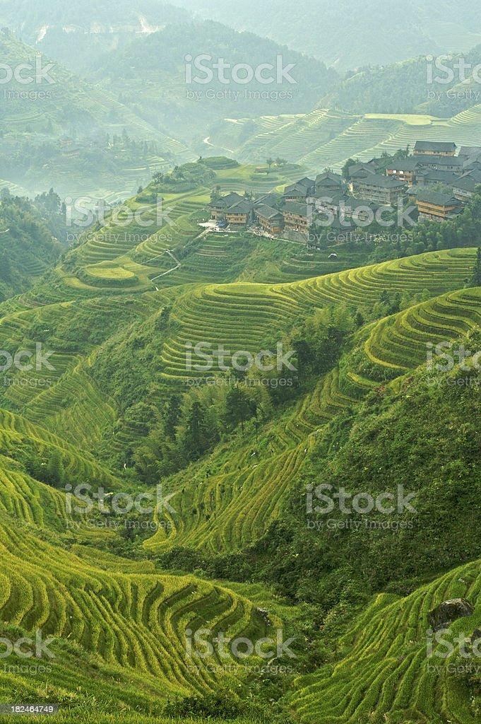 Misty morning over Longji Village royalty-free stock photo