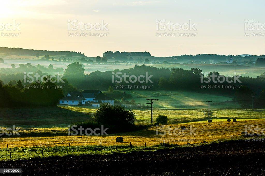 Misty Morning stok fotoğrafı