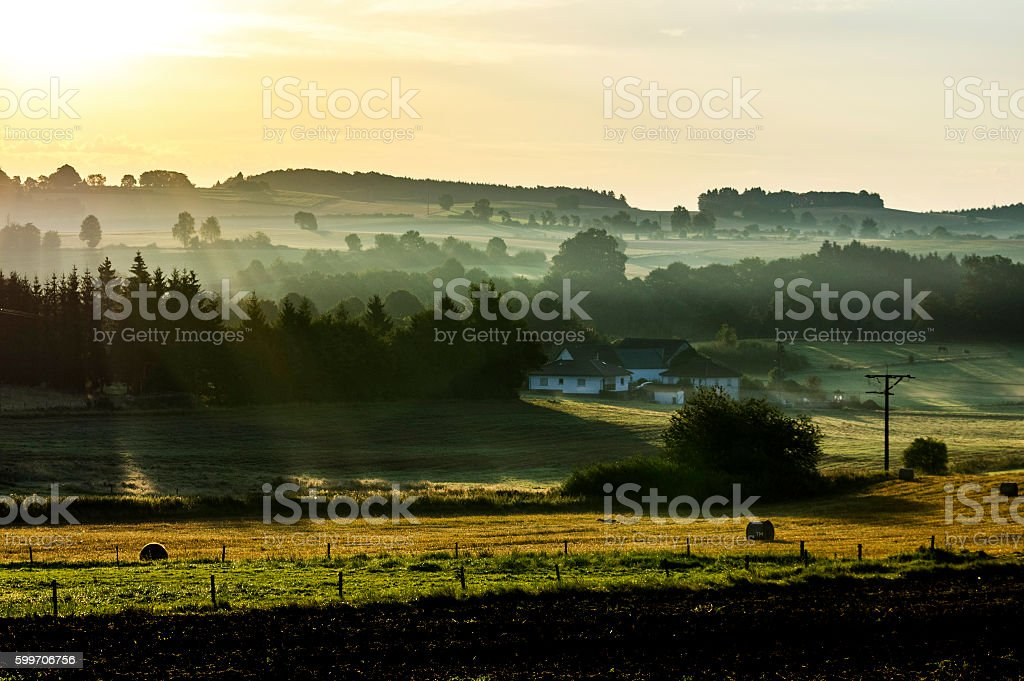 Misty Morning royalty-free stock photo