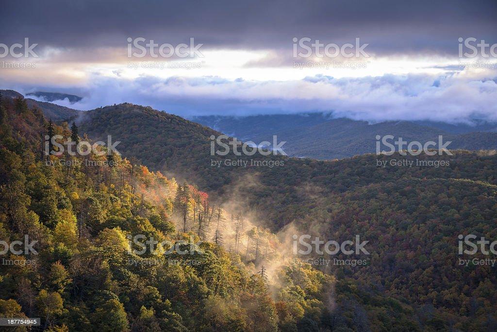 Misty Morning Sunrise stock photo
