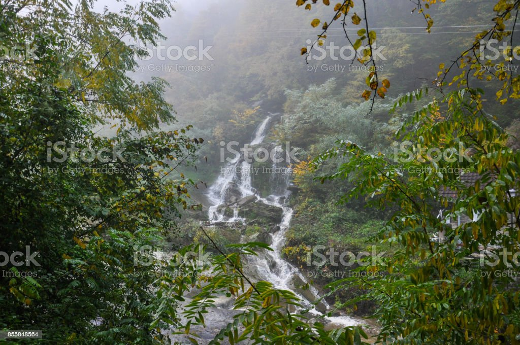 Misty morning under a waterfall. stock photo