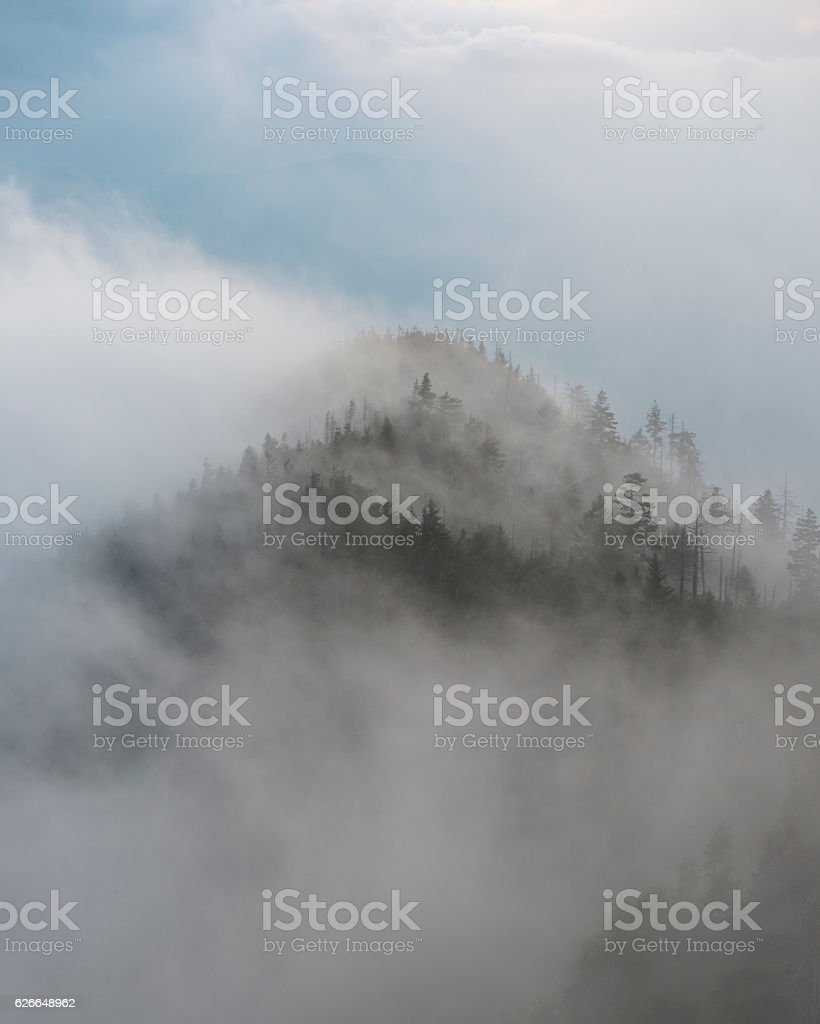 Misty mountain in Great Smoky Mountains National Park stock photo