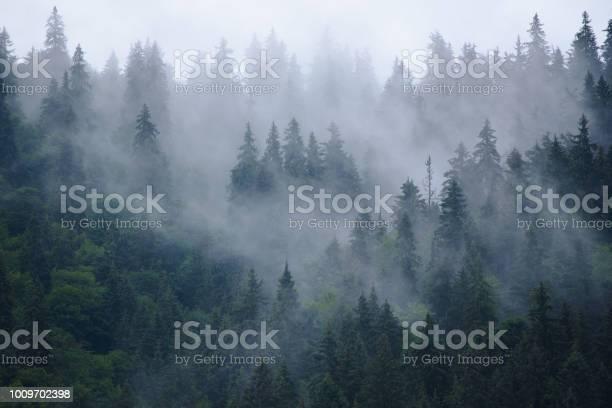 Photo of Misty mountain landscape