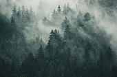 istock Misty mountain landscape 1225447629