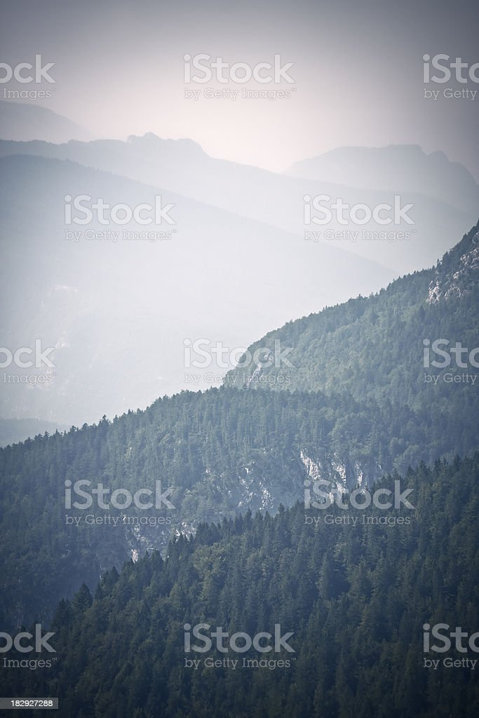 Misty Mountains covered by Trees, Dolomites in Summer royalty-free stock photo