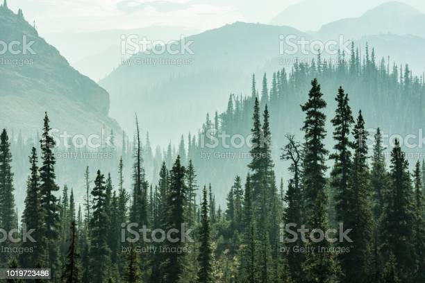 Photo of Misty Mountains