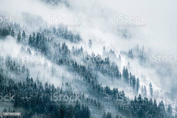 Misty mountains picture id1067955260?b=1&k=6&m=1067955260&s=612x612&h=f73matdtrxihw9kxb50edrvy1rvtvgn5lphz98xxuts=