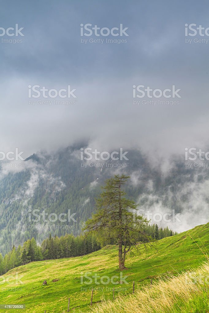 misty mountains stock photo