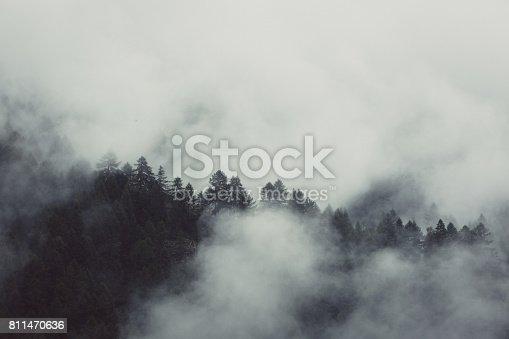 Misty mountain hills landscape, pine trees, Switzerland, Zermatt
