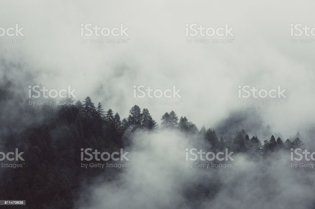 Misty mountan landscape stock photo
