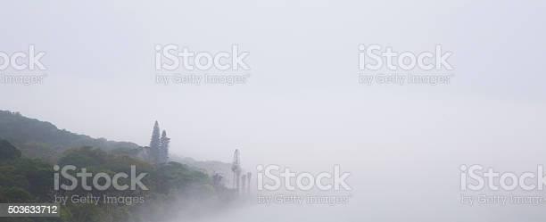 Photo of Misty River Scene Banner