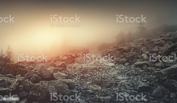 Photo of Misty road in mountains
