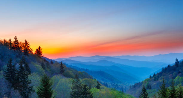 Misty Rolling Mountain Range Just Before Sunrise at Great Smoky Mountains National Park stock photo