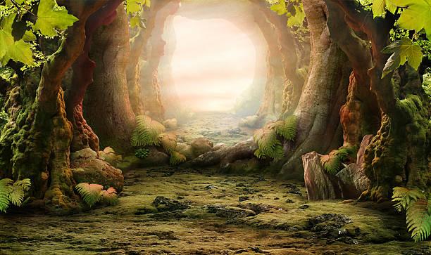 misty 、ロマンチックな森林の風景 - 幻想 ストックフォトと画像