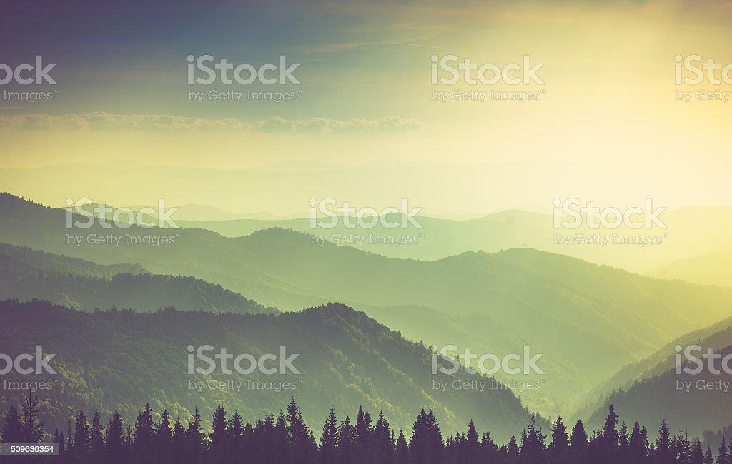 Nebligen Sommer Berg Hügel der Landschaft. – Foto