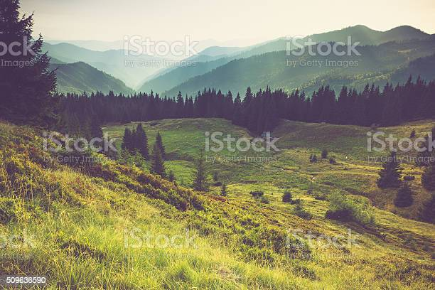Misty Summer Mountain Hills Landscape Stock Photo - Download Image Now