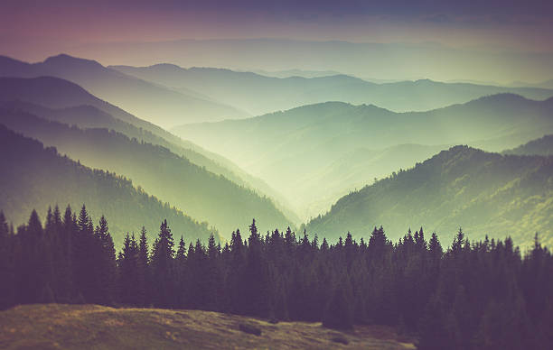 misty summer mountain hills landscape. - mountain range stock photos and pictures