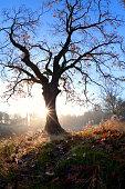 Spectacular, colorful autumn landscape in  Parc Regional de la Riviere-du-Nord, Canada, QuebecSpectacular, colorful autumn landscape in  Parc Regional de la Riviere-du-Nord, Canada, Quebec
