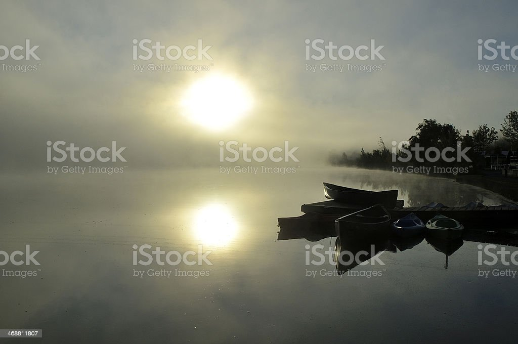 misty sunrise in spring royalty-free stock photo