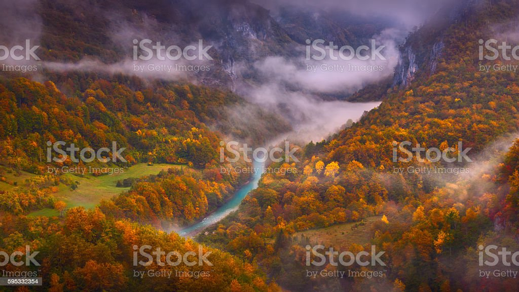 Misty Tara river gorge in late autumn atmosphere stock photo