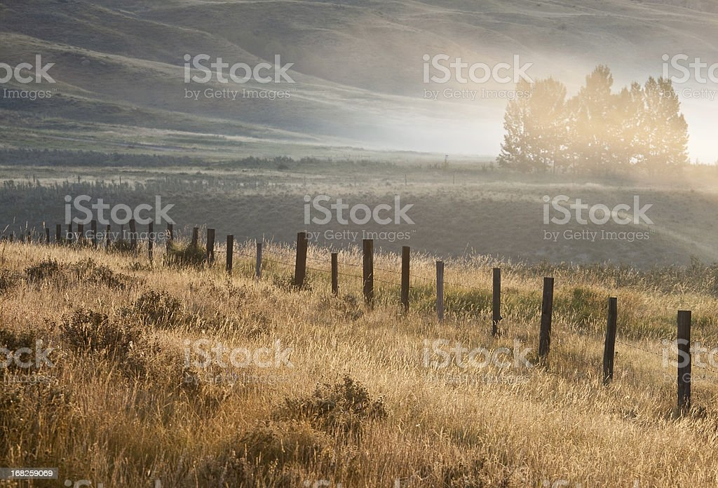 Misty Valley at Glenbow Ranch Provincial Park stock photo