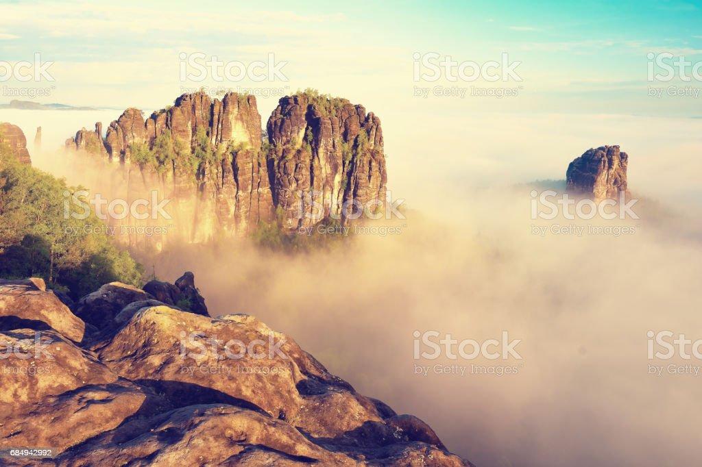 Misty valley, sharp rocks gentle cut creamy fog to strips. Long deep valley full of fresh spring mis Lizenzfreies stock-foto