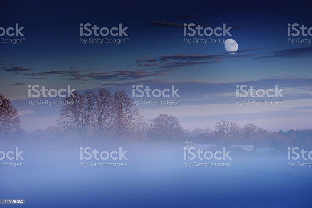 Misty Winter Evening stock photo