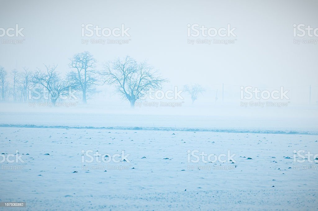 Misty winter landscape royalty-free stock photo